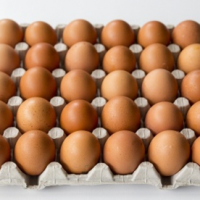Eggs-EasyBazar-30