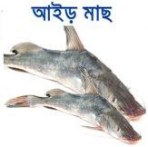 Aair-fish-easybazar-bangladeshi-market-france-free-delivery