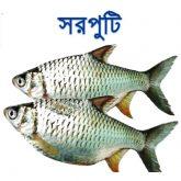 shorputi-fish-easybazar-bangladeshi-market-france-free-delivery