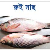 rui-fish-easybazar-bangladeshi-market-france-free-delivery